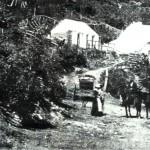 Mt. St. Bernard Hospice summer