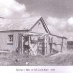 Spargo's Hut