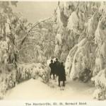 The Harrietville Mt. St. Bernard Road