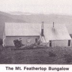 The Mt Feathertop Bungalow